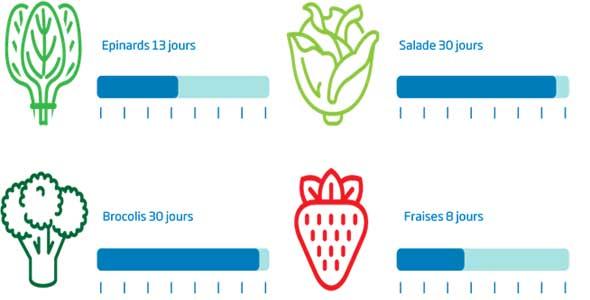 frigo qui conserve plus longtemps legumes et fruits