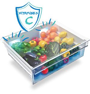 frigo special conservation legumes